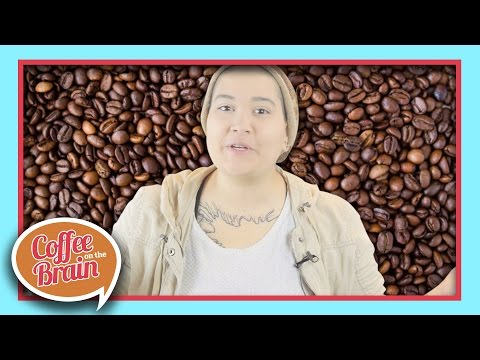 The Difference Between Coffee and Espresso | Coffee On The Brain