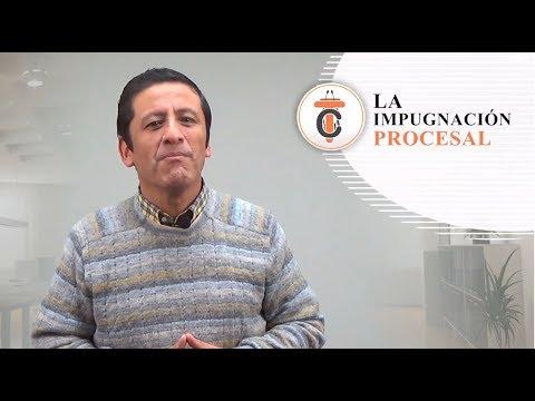 LA IMPUGNACIÓN PROCESAL - Tribuna Constitucional 60 - Guido Aguila Grados