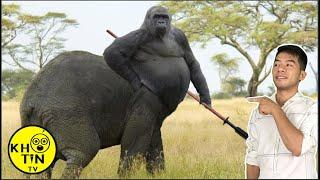 12 loài động vật lai kinh dị nhất hành tinh thật không thể tin nổi