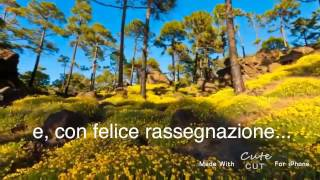 Foglia caduta - video poesia di Mariano Pietro Cangemi (C)