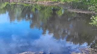 Рыбалка в мордово ульяновской области
