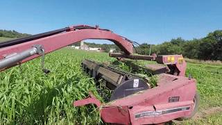 Cutting, Baling, and Wrapping Sudangrass | July 2019