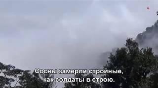 Почему же ты замужем (Subtitles)