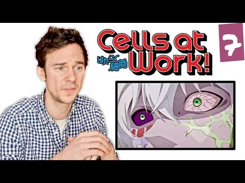 "DOCTOR reacts to CELLS AT WORK! // Episode 7 // ""Cancer Cell"""