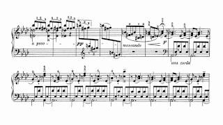 Strauss-Tausig: You Only Live Once - piano transcription