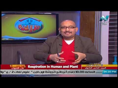 أحياء لغات للصف الثاني الثانوي 2021 - الحلقة 18 - Respiration in Human and Plant