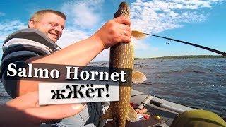 Как ловить щуку на ладожском озере