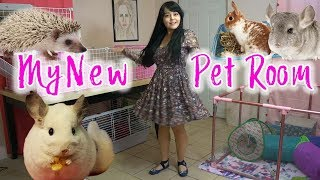New Pet Room | Room & Cages Tour