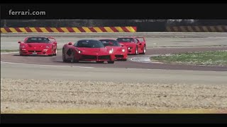 Four Ferrari thoroughbreds for a special driver