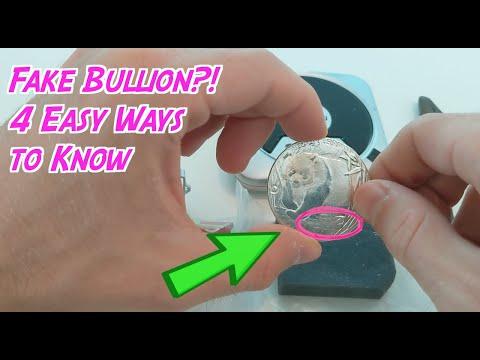 Fake Chinese Silver Panda in eBay Grab Bag? How to Tell