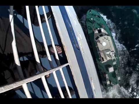 Leaving Alger Pilot jumping ship RMZ