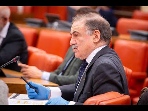 Fernando Gutiérrez Díaz de Otazu en la Comisión de Defensa del Congreso