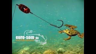 Ловля на подводный поплавок с берега