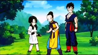 Chi Chi and Videl argue/fight over Gohan