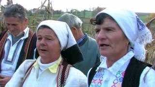 BERBA KUKURUZA - UDRUŽENJE JANJE