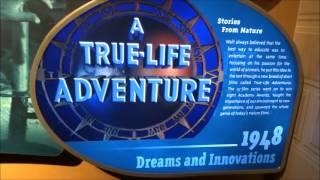 Disney World Vacation Vlog Episode 59 Sept 2015 Day 6 Pt 5