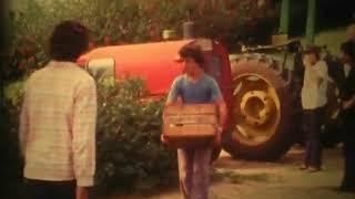 הנערים/ות הבוגרים עוברים ללינה משותפת(1 סרטונים)