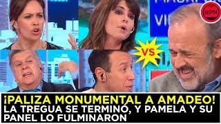¡PALIZA MONUMENTAL A AMADEO! La tregua se terminó, y Pamela y su panel lo FULMINARON