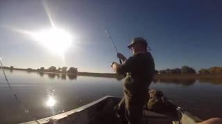 Отдых и рыбалка на ахтубе. базы отдыхать