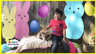 Easter Egg hunt for kids at Farm with Ryan