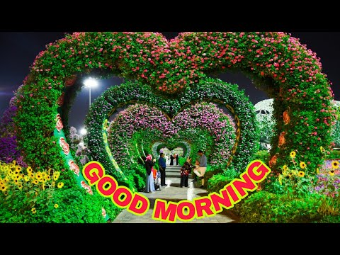 Httpwww Youtubeodia Goodmorningvideo
