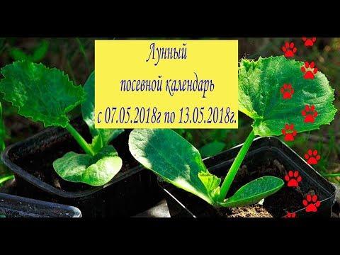 Лунный посевной календарь с 07.05.2018 года по 13.05.2018 года.