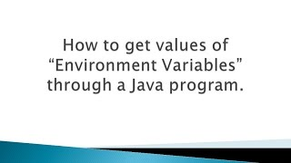 How to get values of Environment Variables through a Java program ?