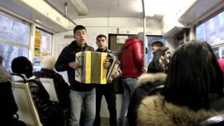 25 цыгане поют в трамвае