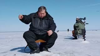 База зимняя рыбалка на рыбинском водохранилище