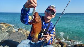 Сколько СИЛЫ и МОЩИ в этих РЫБАХ! Рыбалка на море в Эмиратах
