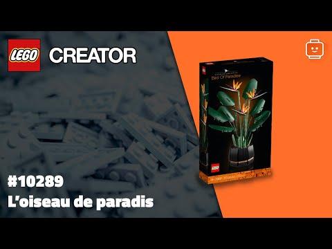 Vidéo LEGO Creator 10289 : L'oiseau de paradis