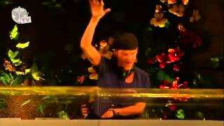 Tomorrowland 2013   Avicii