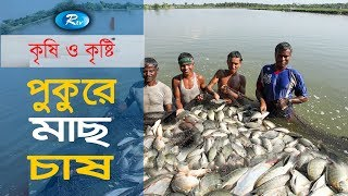 Krishi o Krishti | পুকুরে মাছ চাষ | Ep - 104 | Rtv Lifestyle | Rtv