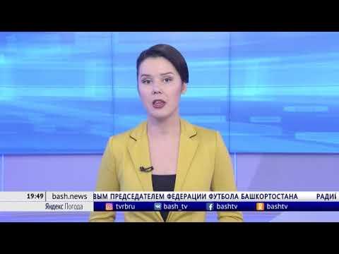 В Ермекеевском районе начали уборку масличных культур