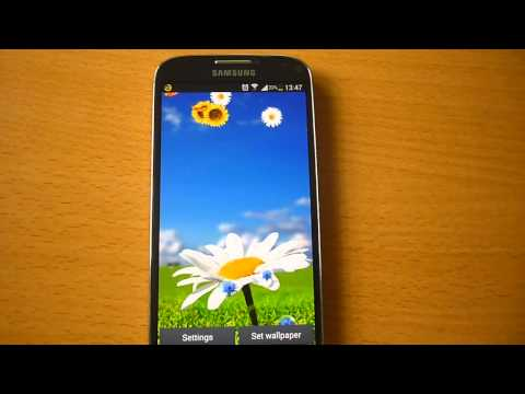Video of Flowers Live Wallpaper