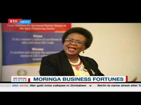 Moringa Business Fortunes | Bottomline Africa