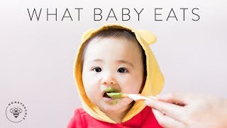 What BABY EATS In A Day (Homemade Baby Food) 👶 | HONEYSUCKLE