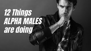 12 things you must do to be an alpha male