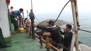 Tin Tức 24h: Nghệ An cứu 9 thuyền viên tàu cá gặp nạn trên biển