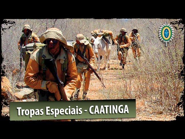 Video de pronunciación de exército en El portugués