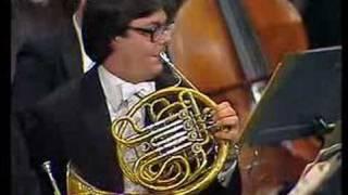 Tchaikovsky's 5th Symphony Horn Solo