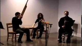 Carmel Raz, Christopher Adler, and Gene Coleman at the Renaissance Society, 2007
