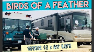 Birds Of A Feather~WEEK 11: RV Life