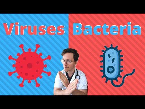 Paraziti u mozgu