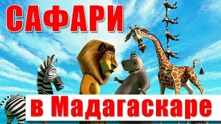 Сафари в Мадагаскаре (детский парк)