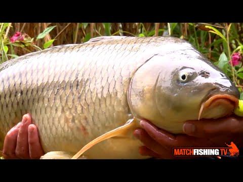 Ricerche del russo che pesca in 3 Dyoma guster
