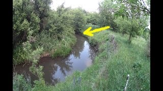 Ловля плотвы на реке