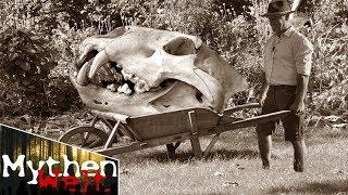 6 unerklärliche und mysteriöse archäologische Funde!