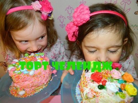 Торт Челлендж від Софійки і Вікусі Cake Challenge Nutella і сирок Jelly Belly VLOG @PrincessTV