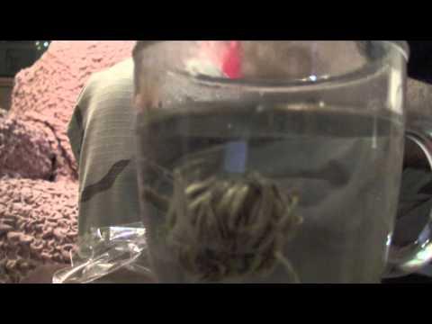Provocare lapparizione di lentiggini